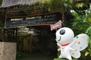حديقة الفراشات في بينانج من افضل اماكن السياحة في ماليزيا