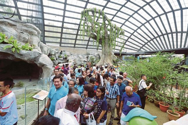 حديقة الفراشات من افضل اماكن السياحة في بينانج