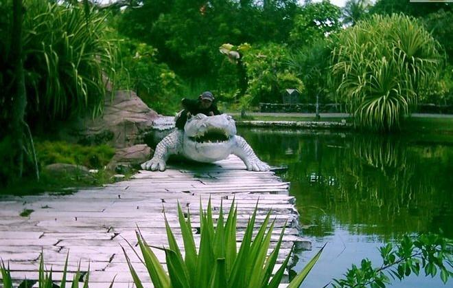 حديقة التماسيح في جزيرة لنكاوي