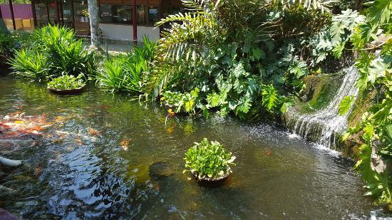 تقع حديقة الحياة البرية لنكاوي Langkawi wildlife park في منطقة