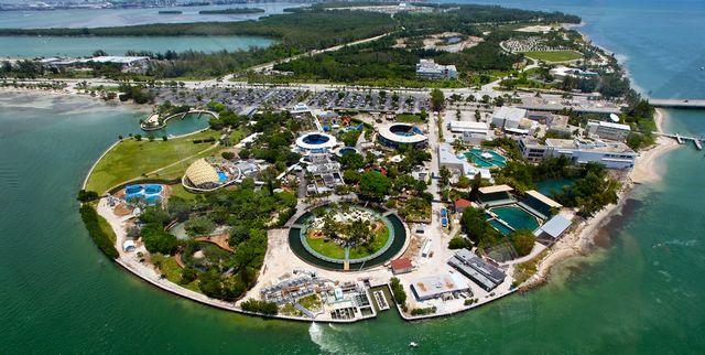 حوض أسماك ميامي من اشهر اماكن السياحة في امريكا