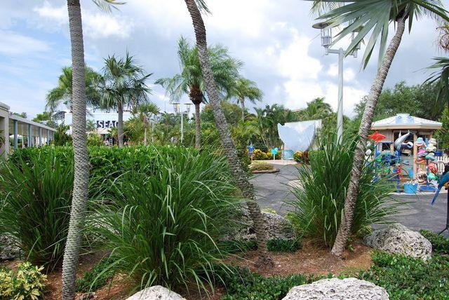 حوض اسماك ميامي من افضل الاماكن السياحية في ميامي