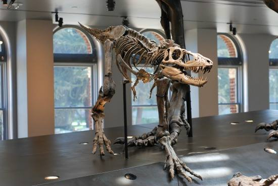 متحف العلوم من اجمل معالم ميامي