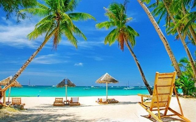 شاطئ ميامي امريكا