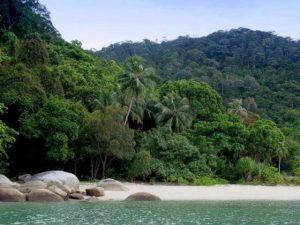 جزيرة القرود في بينانج