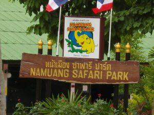 تعرف في المقال على افضل الانشطة السياحية في حديقة سفاري نا موانج كوساموي ، بالإضافة الى افضل فنادق كوساموي القريبة منها