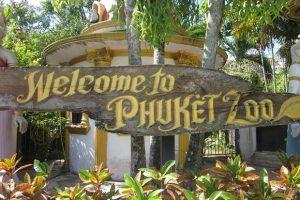 تعرف في المقال على افضل الانشطة السياحية في حديقة حيوان بوكيت تايلاند ، بالإضافة الى افضل فنادق بوكيت القريبة منها