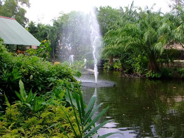 حديقة حيوان بوكيت تايلاند