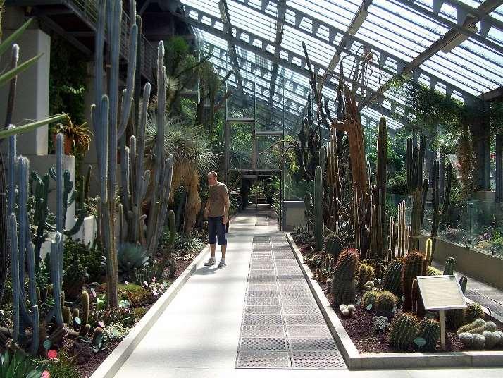 الحديقة النباتية الملكية في اسبانيا مدريد