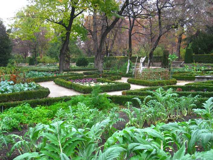 الحديقة النبانية الملكية من اجمل معالم السياحة في مدينة مدريد اسبانيا