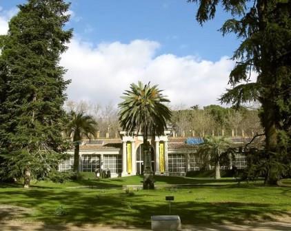 الحديقة النبانية الملكية من اجمل اماكن السياحة في اسبانيا مدريد