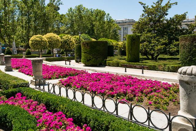 الحديقة النباتية الملكية في مدريد اسبانيا