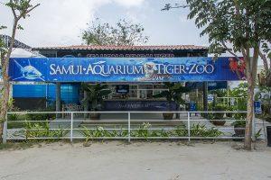 تعرف في المقال على افضل الانشطة السياحية في ساموي اكواريوم وحديقة النمور في كوساموي ، بالإضافة الى افضل فنادق كوساموي القريبة من الحديقة
