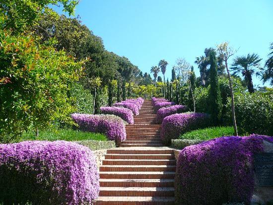 حديقة برشلونة النباتية
