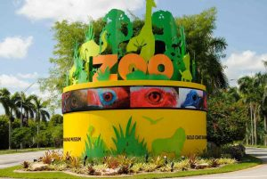 تعرف في المقال على افضل الانشطة السياحية في حديقة حيوان ميامي ، بالإضافة الى افضل فنادق ميامي القريبة منها