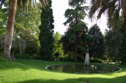 حديقة النباتات الملكية مدريد