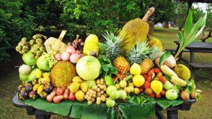 حديقة الفواكه من افضل اماكن السياحة في بينانج