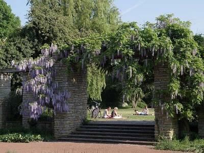حديقة نورد بارك في دوسلدورف المانيا