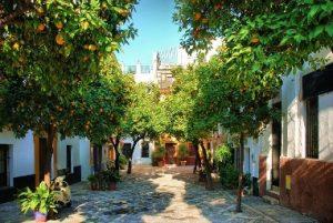 تعرف على منطقة سانتا كروز في مدينة اشبيلية اسبانيا