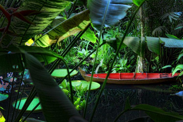 حديقة التوابل في بينانج من اجمل اماكن السياحة في ماليزيا
