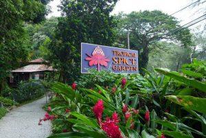 تعرف في المقال على افضل الانشطة السياحية عند زيارة حديقة التوابل في بينانج ماليزيا ، بالإضافة الى افضل فنادق بينانج القريبة منها