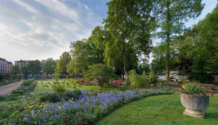 منتزه بيتمان بارك فرانكفورت المانيا