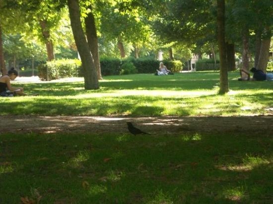 حديقة ريتيرو من اجمل حدائق مدريد