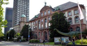 متحف التاريخ الطبيعي من اهم متاحف السياحة في فرانكفورت المانيا