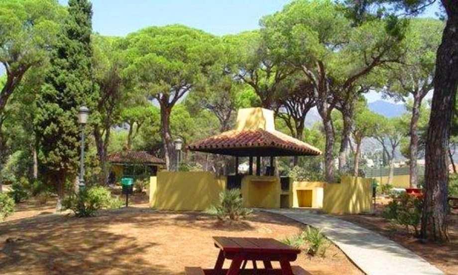 حديقة ألاميدا من اجمل معالم السياحة في ماربيا اسبانيا