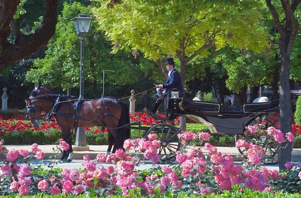 حديقة ماريا لويزا من اجمل الاماكن السياحية في اسبانيا اشبيلية