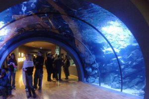 أكواريوم سيفيكو دي ميلان ، من افضل اماكن السياحة في ايطاليا ميلان