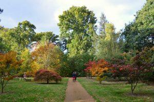 منتزه هاركورت اكسفورد في انجلترا