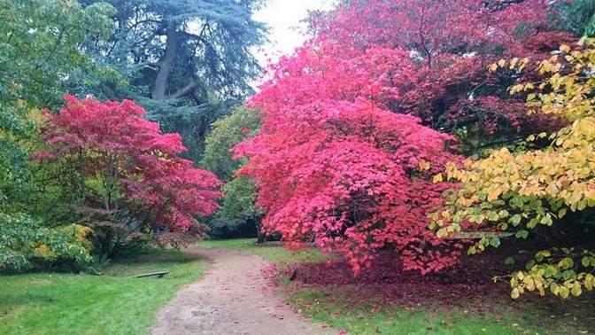حديقة هاركورت اكسفورد