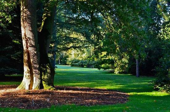منتزه هاركورت في اكسفورد انجلترا