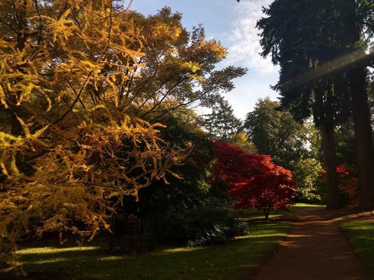 منتزه هاركورت اكسفورد انجلترا