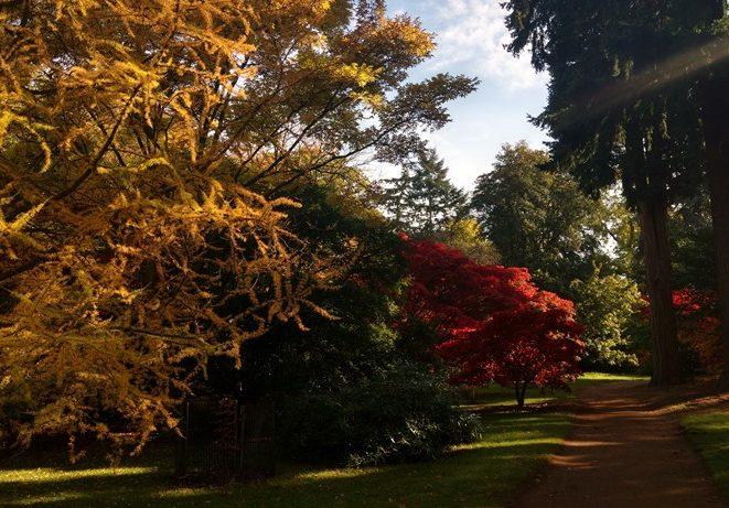 منتزه هاركورت من افضل اماكن السياحة في اكسفورد