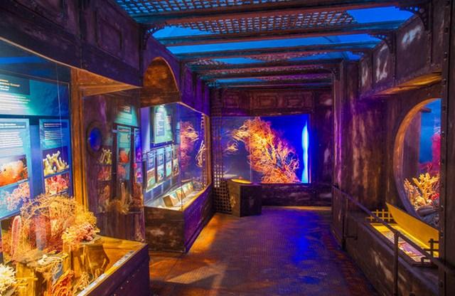 متحف بيت الطبيعة في سالزبورغ