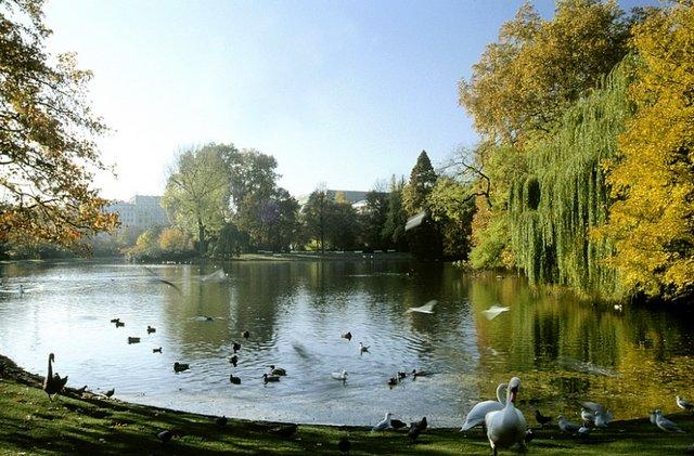 حديقة هوفجارتين من اجمل اماكن سياحية في مدينة انسبروك النمسا