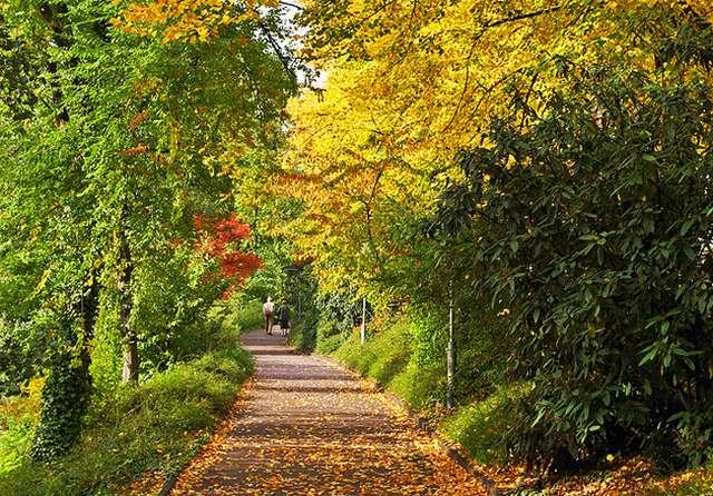 حديقة هوفجارتين في انسبروك النمسا
