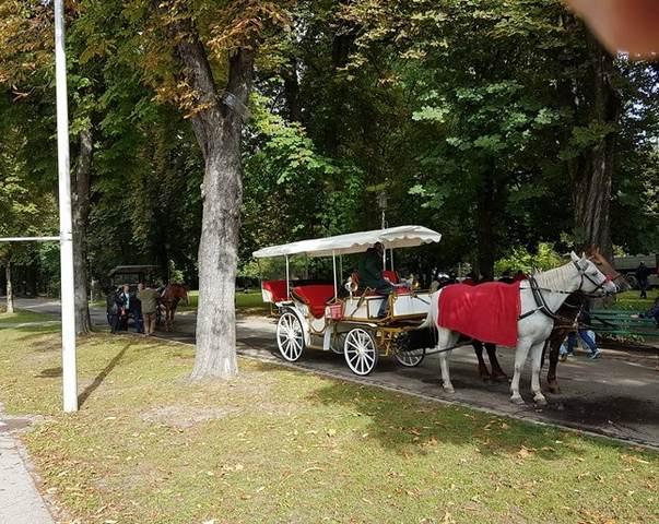 حديقة هوفجارتين من اجمل حدائق انسبروك النمسا