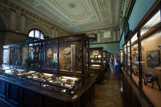 متحف التاريخ الطبيعي في فيينا النمسا