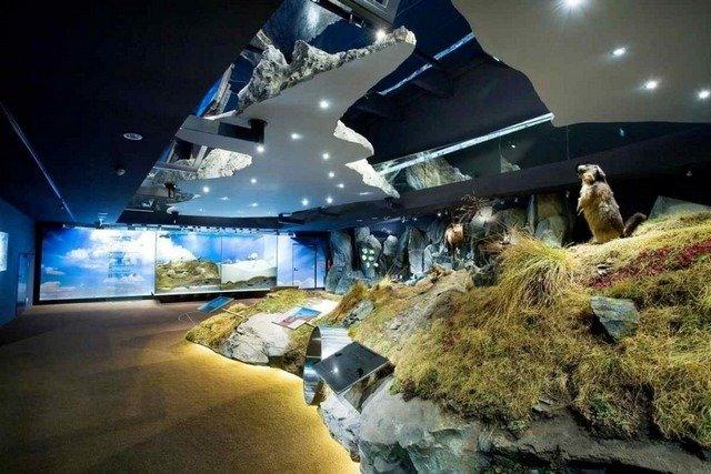 الحديقة الوطنية هوه تاورن من افضل الاماكن السياحية في النمسا زيلامسي