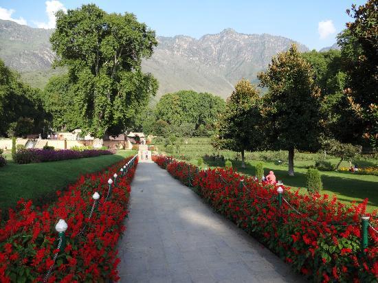 حديقة نيشات باغ في وادي كشمير