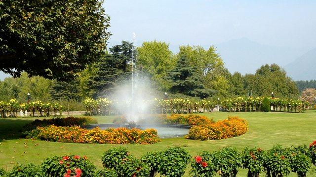 حديقة نيشات باغ في كشمير