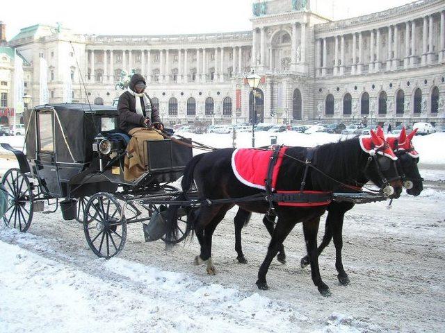 قصر هوفبورغ من اجمل الاماكن السياحية في فيينا
