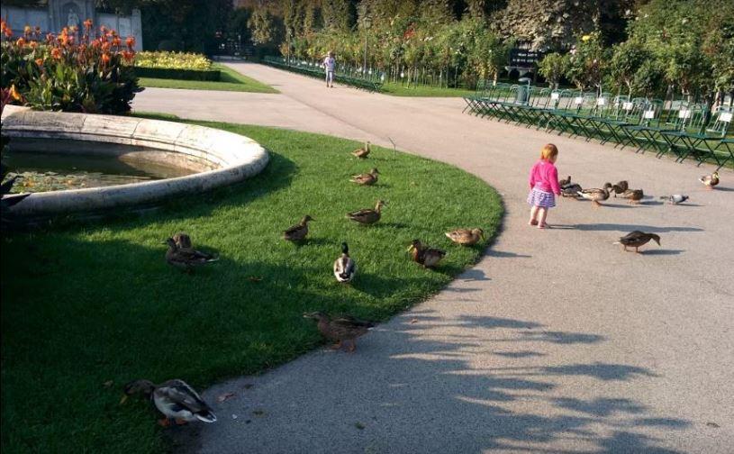 حديقة الزهور من افضل اماكن السياحة في فيينا