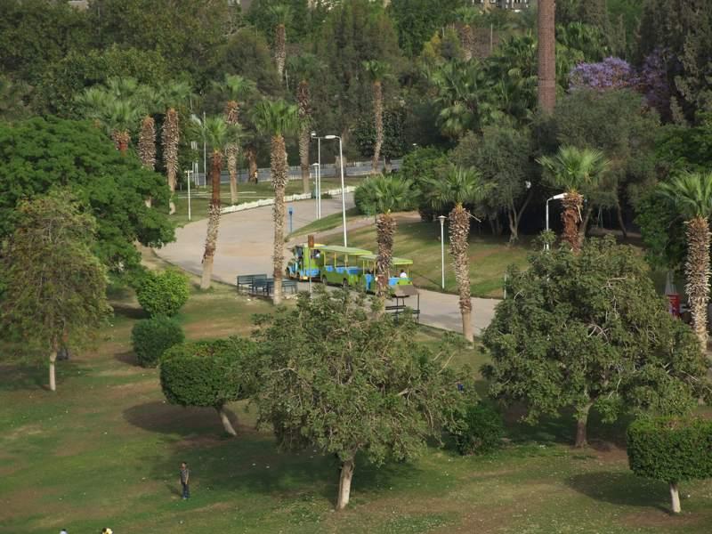 الحديقة الدولية مدينة نصر في القاهرة