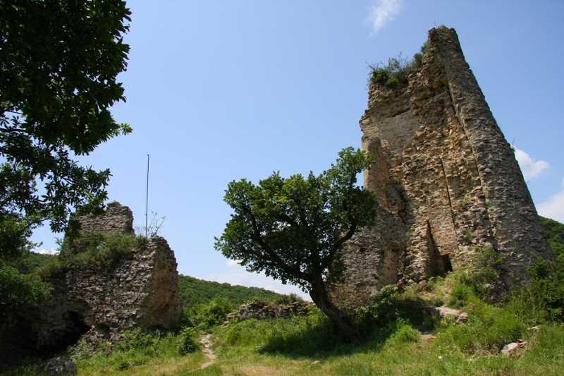 قلعة بيتر في بورجومي