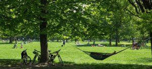 تعرف في المقال على افضل الحدائق في فيينا