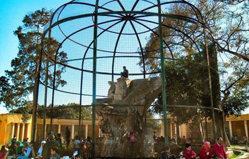 حديقة حيوانات الاسكندرية من اهم اماكن سياحية في الاسكندرية مصر